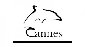 Cannes Dolphin Awards - Pretzel Films